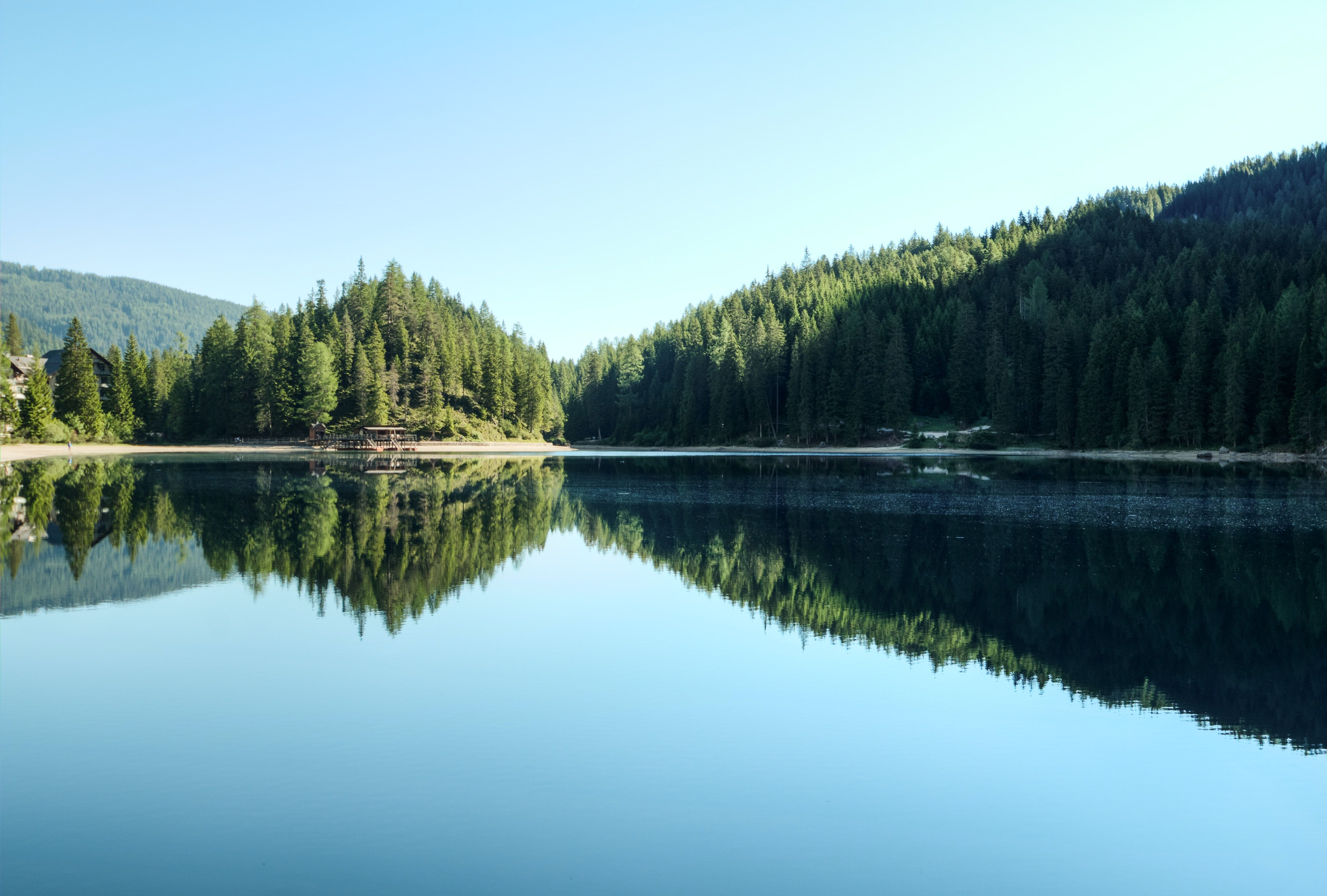Calm lake lined with trees